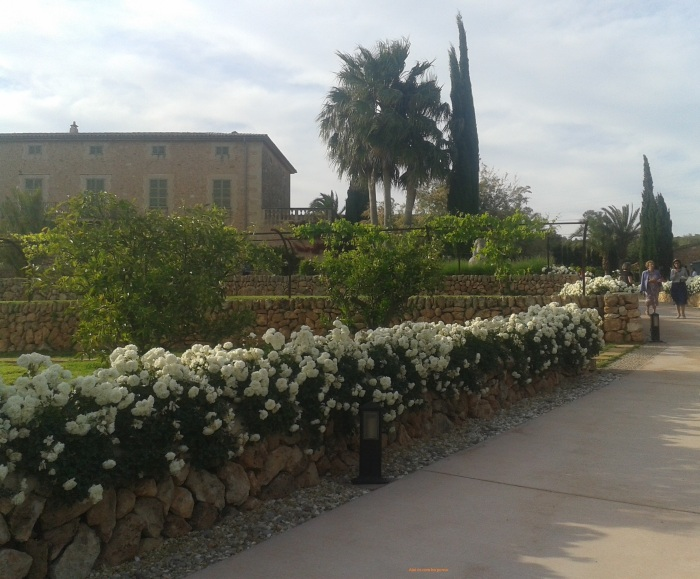 jardinesboda
