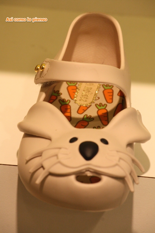 zapatolor