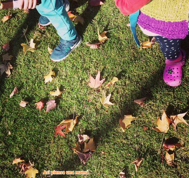 pisar hojas