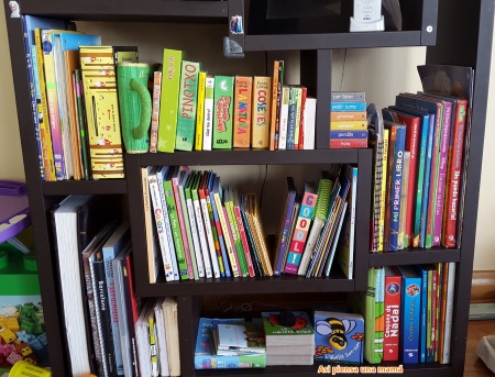biblio-libros-lecturas