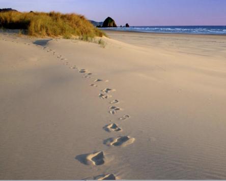 mindfull walking