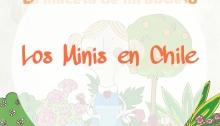 Los minis llegan a Chile