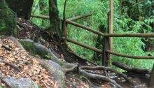 escaleras-naturales-caburga