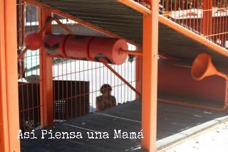 paruqe-bicentenario-laberinto