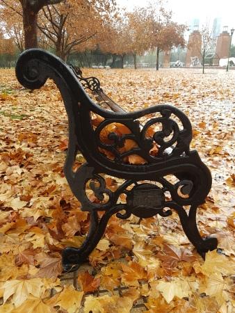 Banco-hojas-otoño