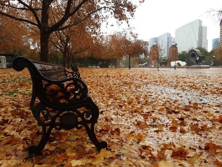 parque-otoño-lluvia