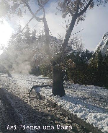 san-carlos-nevado