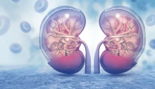 riñones-nefritis