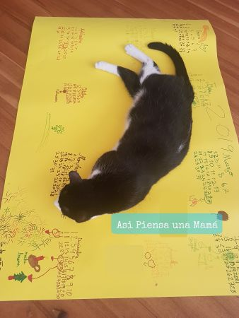 calendario-alfombra-gato