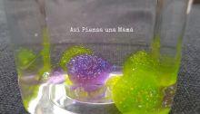purpurina-fasco-calma