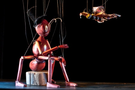 El-circo-de-los-insectos-famfest