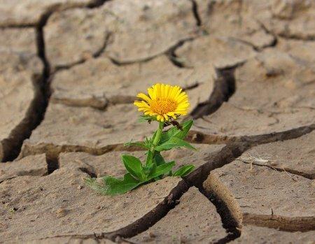 pensar positivo-tupuedes
